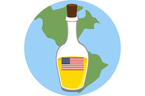 Californian Olive Oil