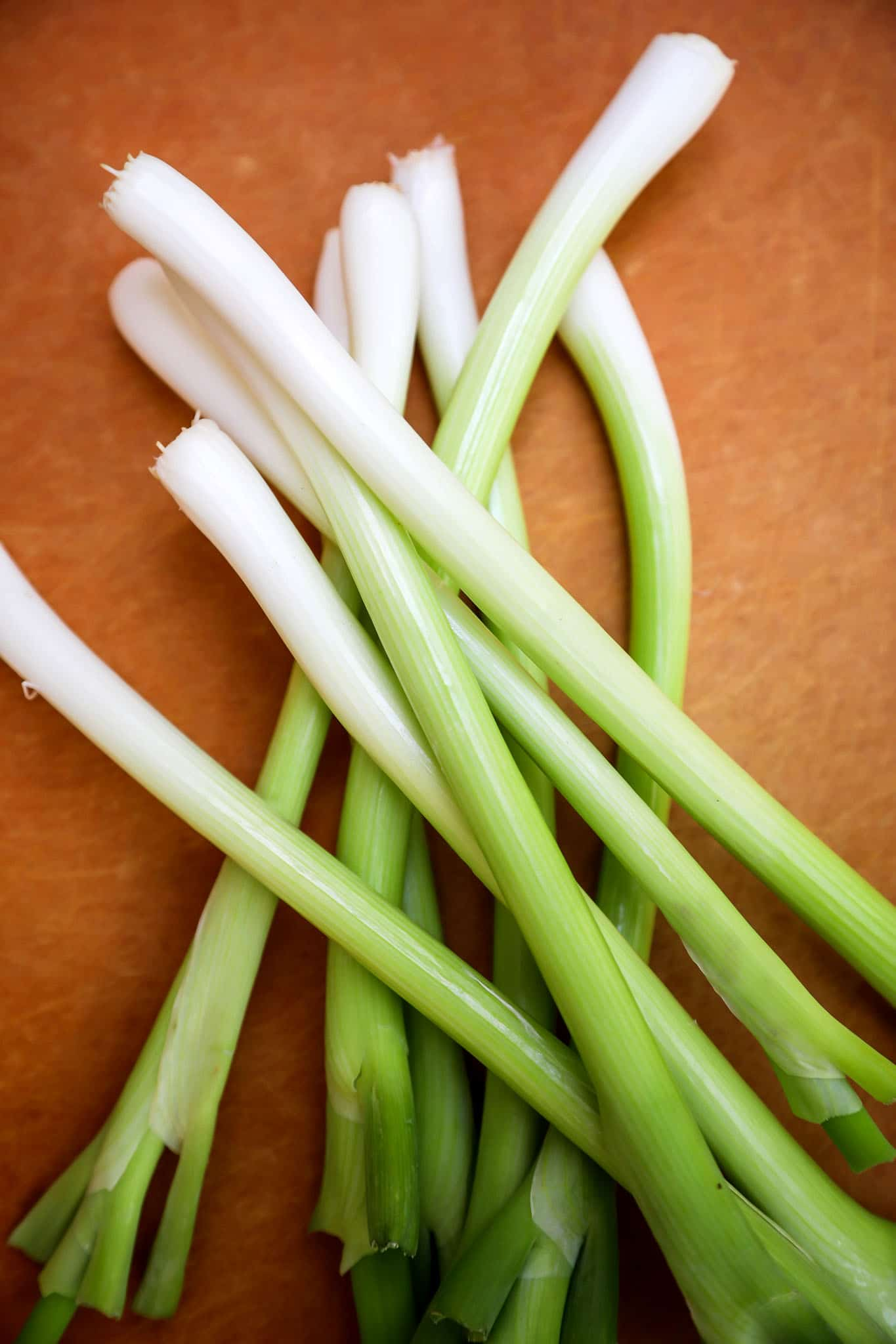 Scallions_vs_Green_Onions_3